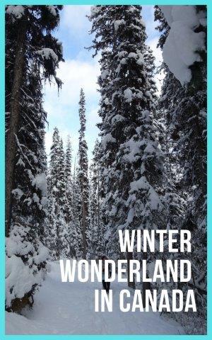winter wonderland in Canada