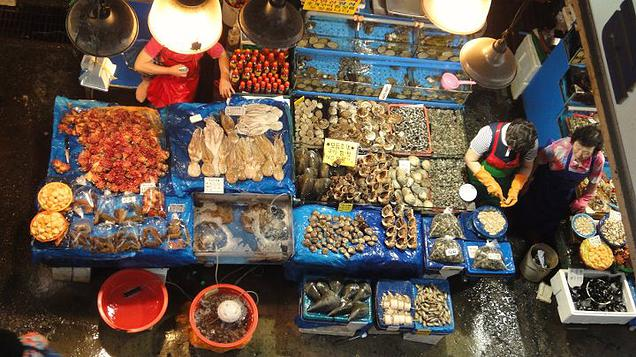 5 Destinations in Asia worth revisiting - Visited the local fish market. The range of fresh seafood is massive, and there are also restaurants linked to each shop where you can buy and get them to cook your fresh purchase to consume on the spot.