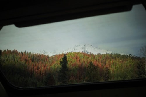 Fall Foliage from the view at Dome Carriage on VIA Rail