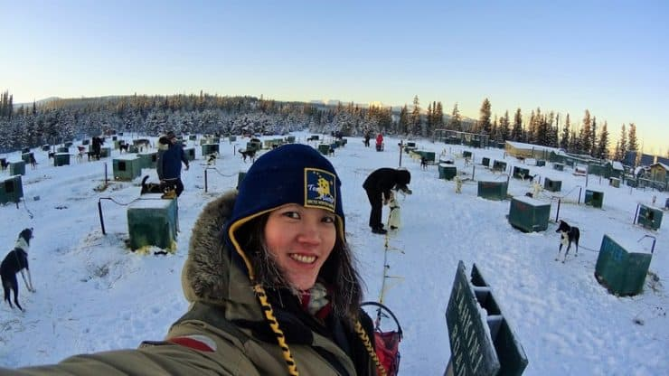 Yukon Dog Sledding | The sled dog selection process begins. My first dog at the lead is on