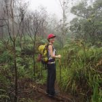 me against the cloudy misty backgroundscenic view along the way | climbing mount rinjani