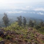 scenery along the hike of mount rinjani
