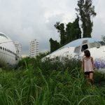 Standing amidst the long plants and grass and marveling at the ruined yet stunning planes in the airplane graveyard bangkok