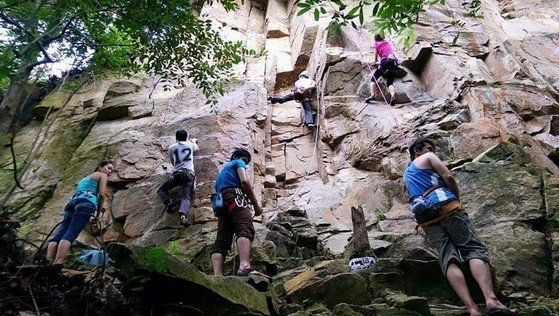 Outdoor Nature Dairy farm Climbing at Singapore | Rock climbing near me