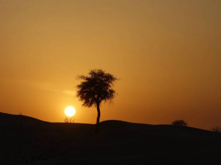 Sunsets at the sand dunes in dubai | Destinations for the Best Sunrises and Sunsets in the World