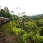 Sri Lanka - Land of Spices and Smiles