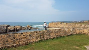 ely on the fort in sri lanka with the coastal backdrop