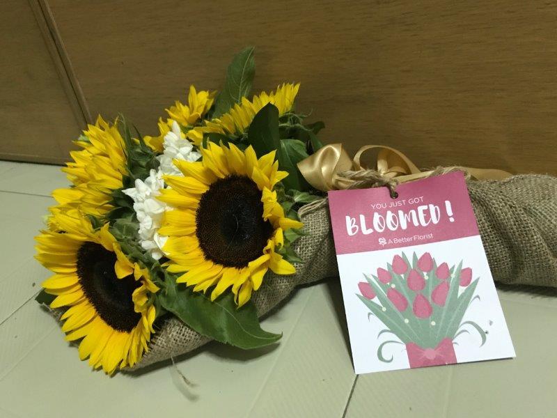 You've Just Got Bloomed!