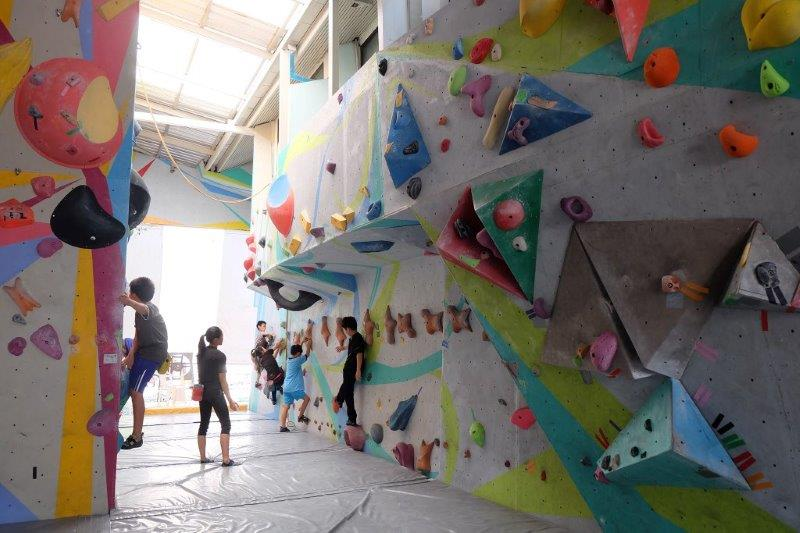 Indoor rock climbing boulder | Photo credited to Pro Climber Climbing Gym