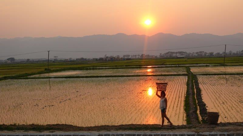 Sunset moments at Inle Lake | Just an everyday life of these myanmar people
