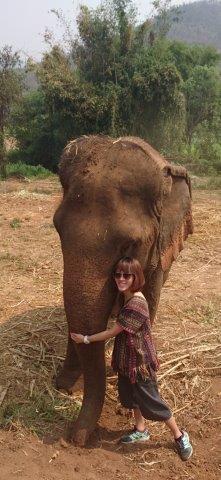 Spa and Swim with Elephants – Chiang Mai Elephant Tours