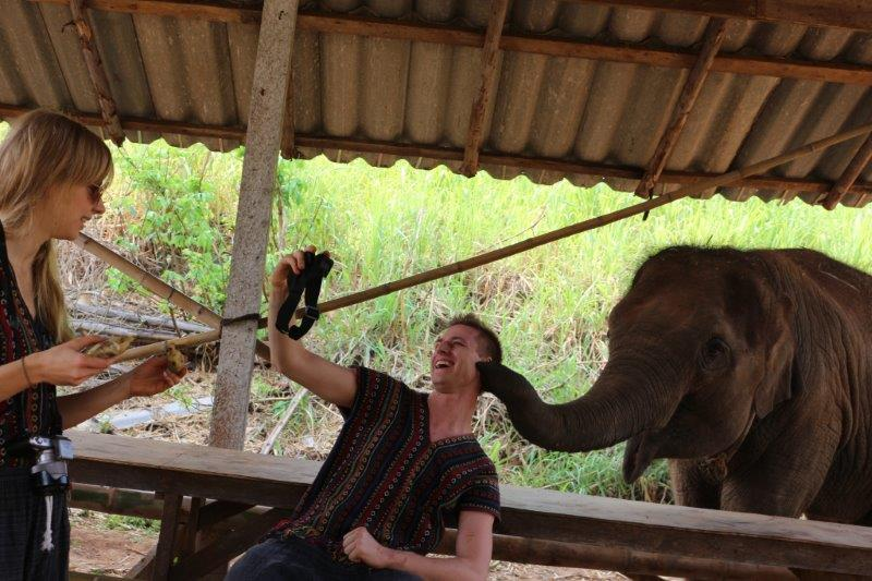 <strong>Kissed by baby ele again | Get some love at this Thailand Elephant Tour</strong>