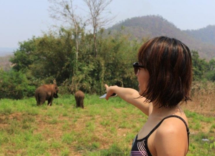 Spotting the elephants from afar | Elephant Sanctuary Thailand