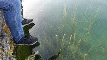 Glass clear water on the lake, remember what I mentioned about the underwater life | Banyoles Lake Activities
