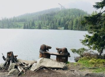 Do those beavers look real to you?? An incredible backdrop for this wooden sculpture only spotted here in High Tatras Mountains.