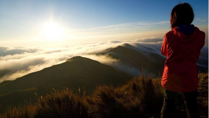 At the top of the mountain captivated by the beauty of the landscape | Mount Pulag in Philippines