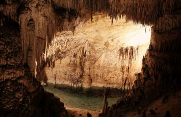 Carlsbad Caverns National Park: A BAT-tastic Adventure Awaits!