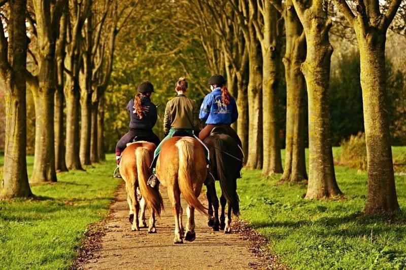 Three women ride ponies down path