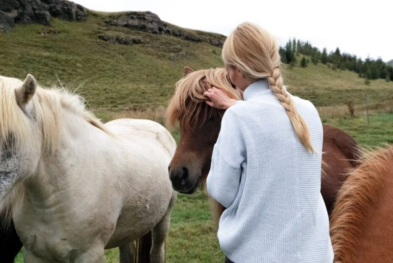 Develop an unbreakable bond with your travel buddy | Horseback Riding Experiences