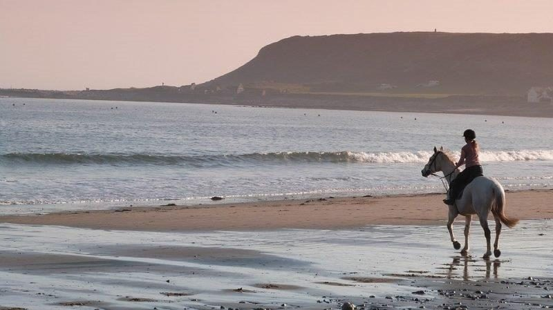 Exhilarating rides along stunning beaches await you in Wales   Horsebeach