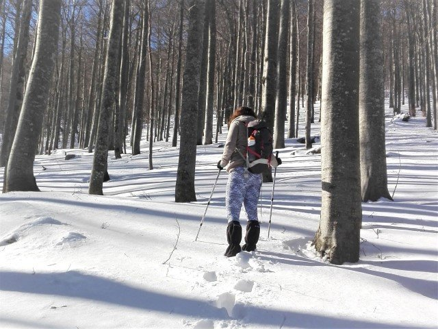 Getting lost on the snow in Slovene mountains but found again