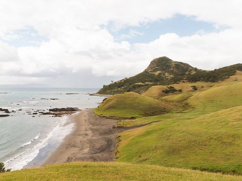 Scenic Campervaning Road Trip at Coromandel Peninsula