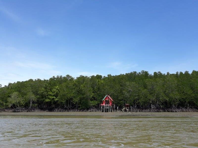 One of the authentic homestay activities at Ban Nam Chieo - Mangrove boat ride out to sea