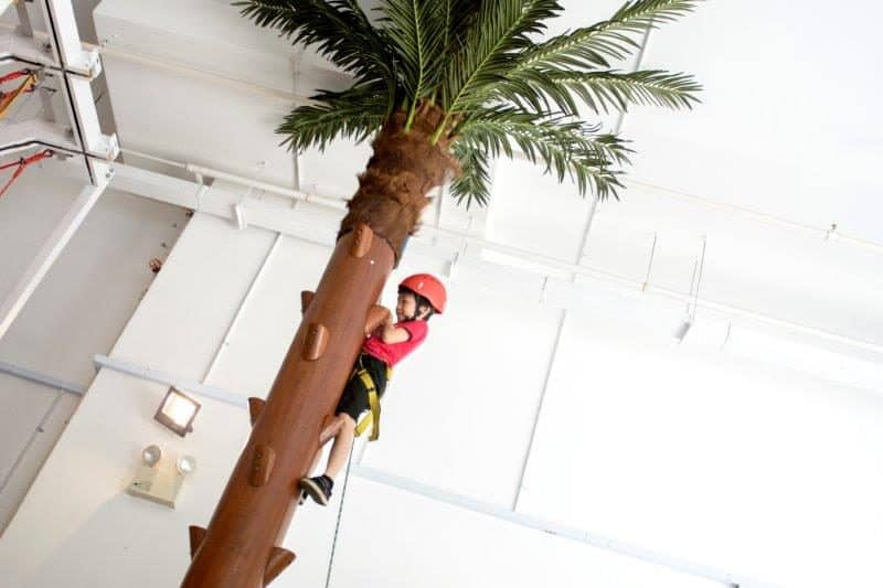 Climb high and happy on the coconut tree in Let Em Climb! Let yours kids feel like a monkey for a day and challenge themselves in this kids designed climbing gym.
