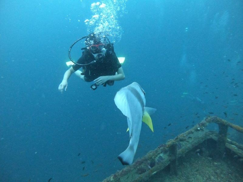 Ultimate Guide to Unique Attractions and Diving in Brunei