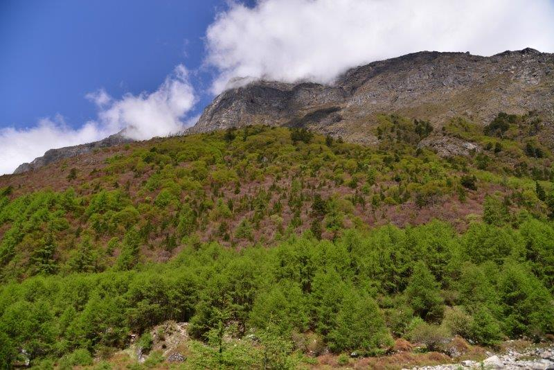 Near Ghunsa Village