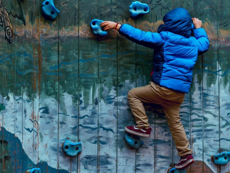How to Pick the Best Kid's Climbing Harness