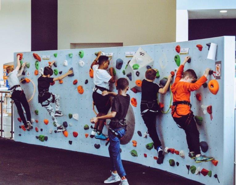 Kids Climbing Wall - 7 Best Kids Climbing Harnesses in 2020